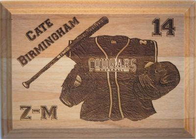 Softball plaque